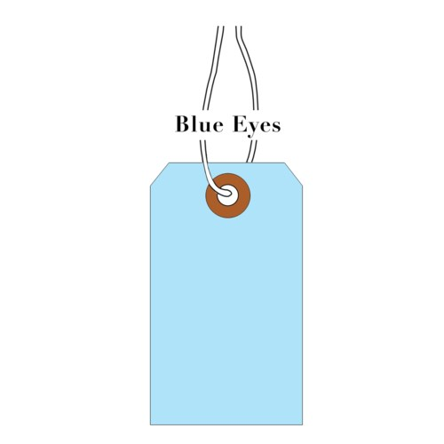 Tag-BlueEyes LightBlue (pk of 10)|Presto