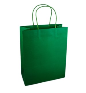 BAG-Evergreen Large|Presto