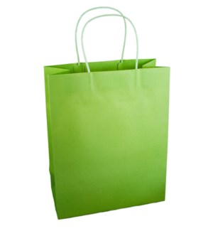BAG-Pistachio Large|Presto