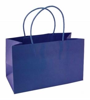 bag-Mini Navy|Presto