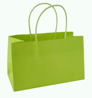 bag-PR Mini Pistachio|Presto