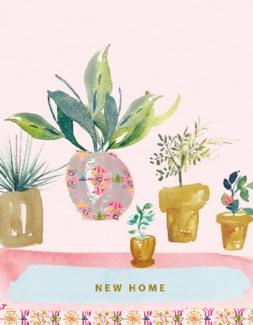 Pot plants 4.25x5.5 Stephanie Dymant