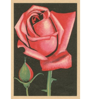 Red Red Rose|Art Press