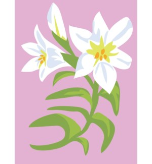 Easter Lily|Great Arrow