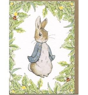Peter Rabbit Leaf Border|Hype