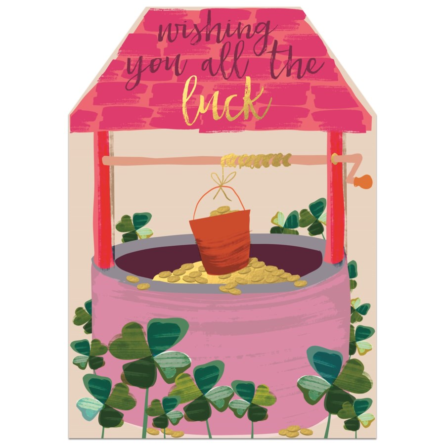 Pink Wishing Well  5  X 7 | Winged Hat