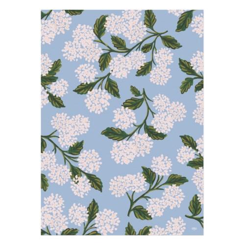 Single Hydrangea Wrapping Sheet (Flat)