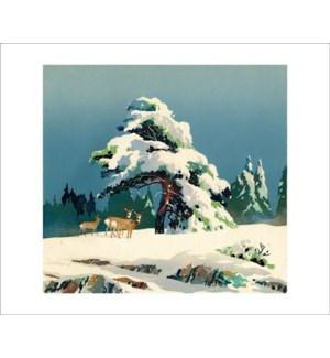 Christmas Morning|Art Angels