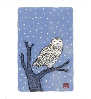 Snowy Owl|Art Angels