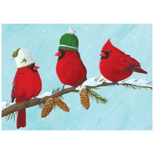 BOX-Cardinal Hats|Allport