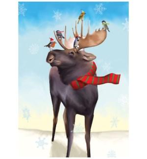 Scarf Moose/15's|Allport