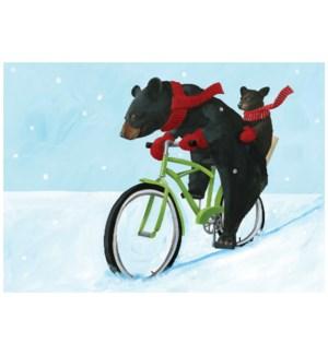 Bear Bike/15's|Allport