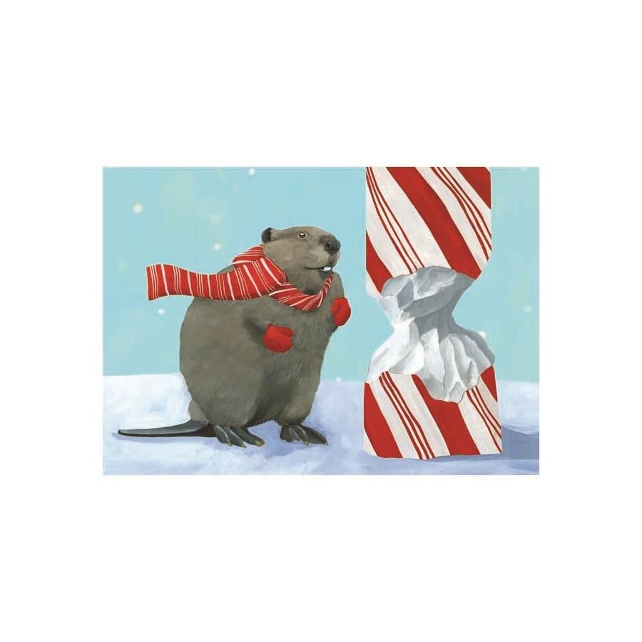 BOX-Beaver|Allport