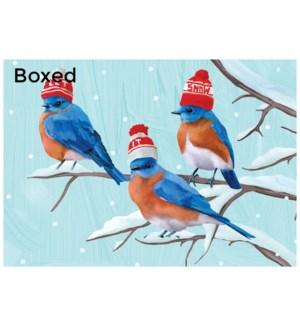Bluebirds Holiday/15's|Allport