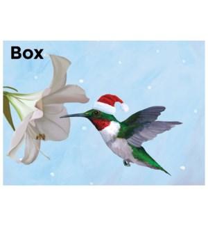 Hummingbird/15's|Allport