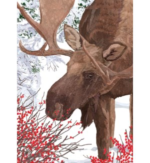 Moose And Berries BOX 15 |Allport