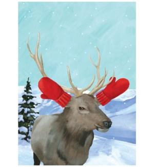 Winter Elk|Allport