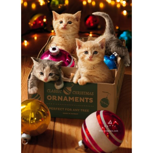 Kittens In Ornament Box|Z