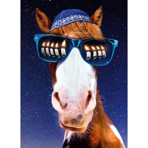 Horse Menorah Sunglasses|Z