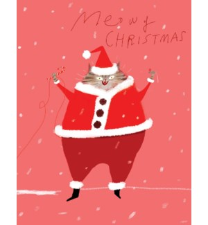Santa Cat |Calypso
