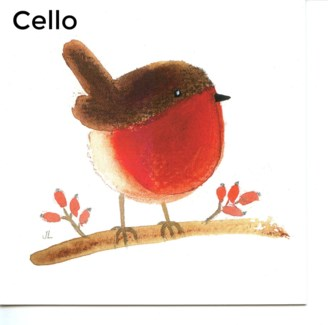 Robin And Berries - Cello Pack Of 5|Canns Down