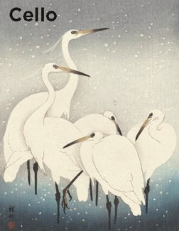 Herons In The Snow - Cello Pack Of 5|Canns Down