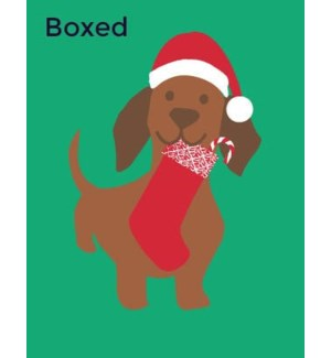Doggie With Stocking 4x5.5 acetate box of 10|Great Arrow