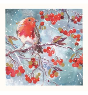 Robin Amongst The Berries Acetate  10 ea of1 6x6|Ling Design