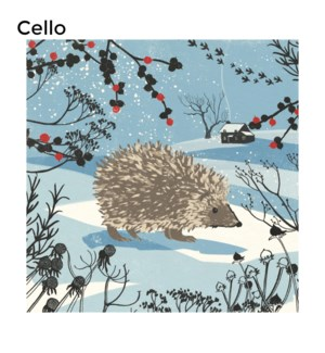 CELLO Hedgehog Museums and Galleries