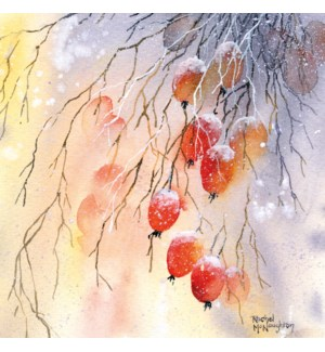 Frosty Berries4 7/8x4 7/8  /Pk 8|Museums Galleries