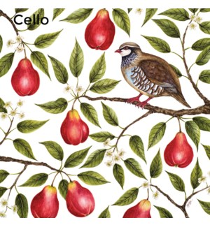 Partridge In A Pear Tree/ Cello Pack of 5 Museums Galleries
