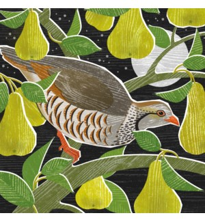 CELLO-Partridge In A Pear Tree|Museums Galleries