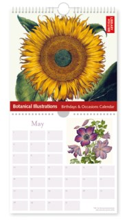 Botanical Illustrations Museums Galleries