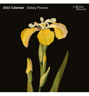 CALENDAR Delany Flowers|Museums and Galleries