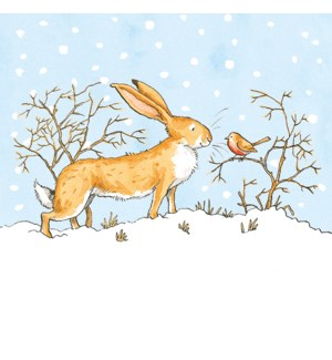 LITTLE NUTBROWN HARE Cello pack of 8|Museums Galleries