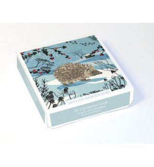BOX Winter Woodland|Museums and Galleries
