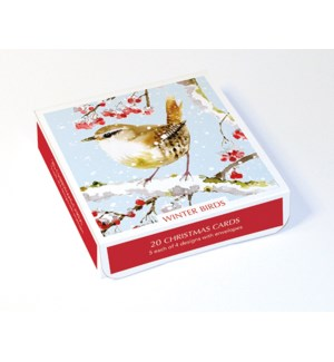 BOX Winter Birds|Museums and Galleries