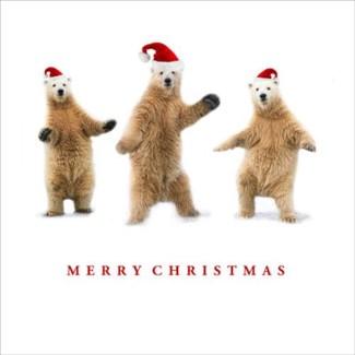 Christmas dancing bears Portfolio
