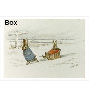 BOX-The Sled Retrospect