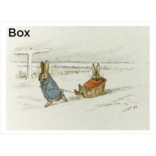 The SledPrincess box/15's|Retrospect