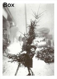 Little Boy with Christmas Tree Princess Box/15's|Retrospect