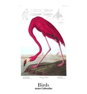 Birds 12.5x19 Retrospect