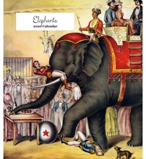 Elephants 6.25x5.5 Retrospect