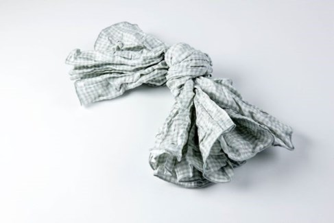 gingham napkins - set of 4