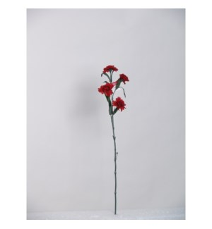 T-RD20531WB CARNATION SPRAY