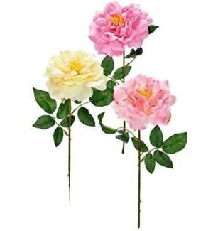 FLOWERS #6122 SPRING PEONY STEM