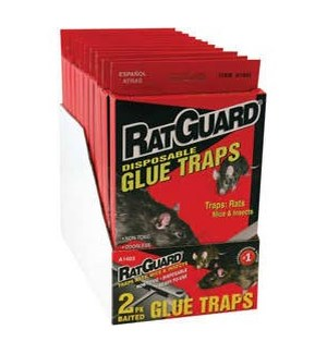 RAT GLUE TRAP #3104