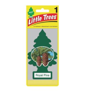 1PK AIR FRESH - ROYAL PINE