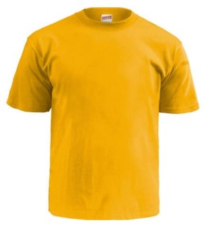 T-SHIRTS * GOLD SOFFE