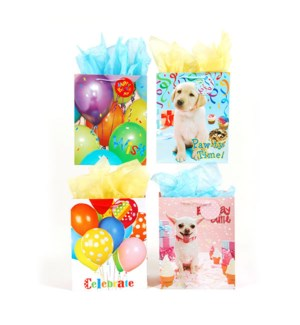 GIFT BAG #BB631E BIRTHDAY/ASST